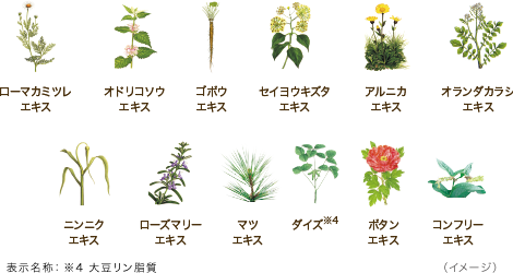 12種類の植物由来成分イメージ