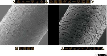 キューティクルの剥離ダメージ写真