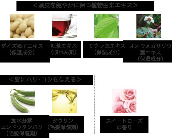 その他の主な配合成分(スキャルプクリア・ヘアリフト共通)